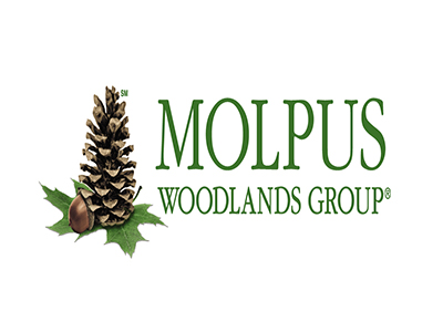 Molpus Woodlands Group Purchases 66,946 Acres in Southeast Mississippi